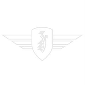 Kraftstoff-Filter  6 mm